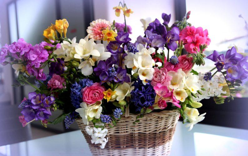 Цветочный рай в Харькове