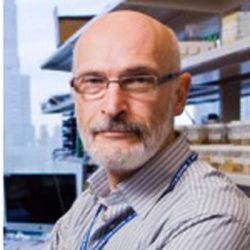 Академия, присуждающая Нобелевские премии, удостоила наградой российского ученого