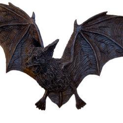 Летучие мыши-вампиры перешли с крови птиц на кровь людей