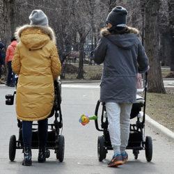 83 процента россиян оказались родственниками друг другу
