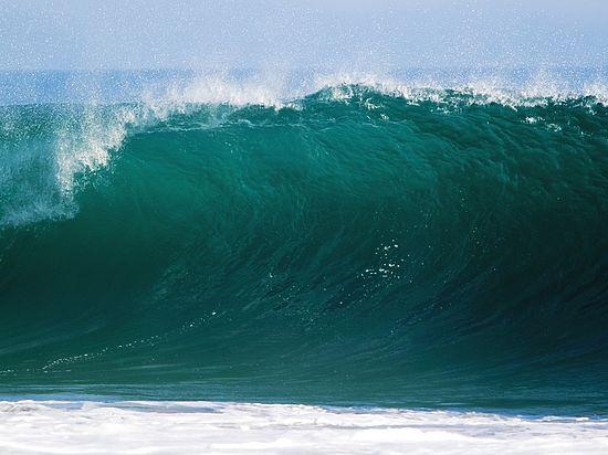 Зафиксировано пугающе быстрое снижение уровня кислорода в Мировом океане