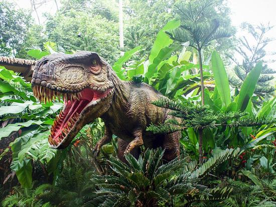 В Австралии обнаружены самые разнообразные в истории следы динозавров