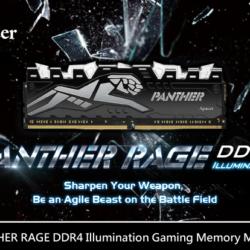 Модули памяти Apacer Panther Rage DDR4 нарастили частоту до 3 ГГц