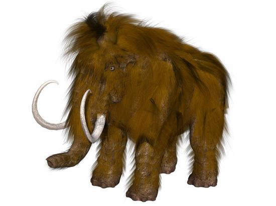 Ученые рассказали, что погубило последних мамонтов на Земле