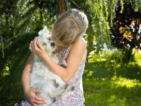 Домашние животные защищают детей от ожирения и аллергии