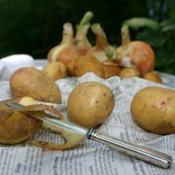 Поедание картофеля объявлено способом похудеть