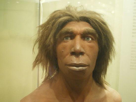 Исследование показало, что современные люди появились 300 тысяч лет назад