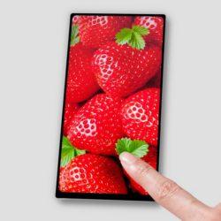 Japan Display представила шестидюймовый экран Full Active с соотношением сторон 18:9