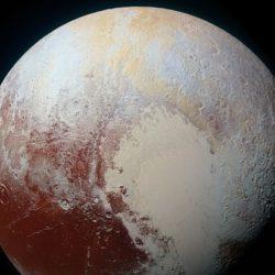 СМИ: NASA прокомментировало новости о гигантских улитках на Плутоне