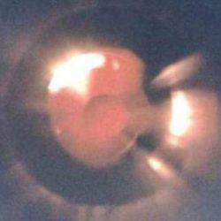В интернет попал снимок НЛО, сделанный с небывало близкого расстояния