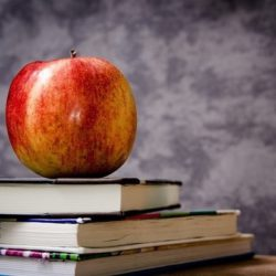 Найдены доказательства, что образование продлевает жизнь, а лишний вес — сокращает
