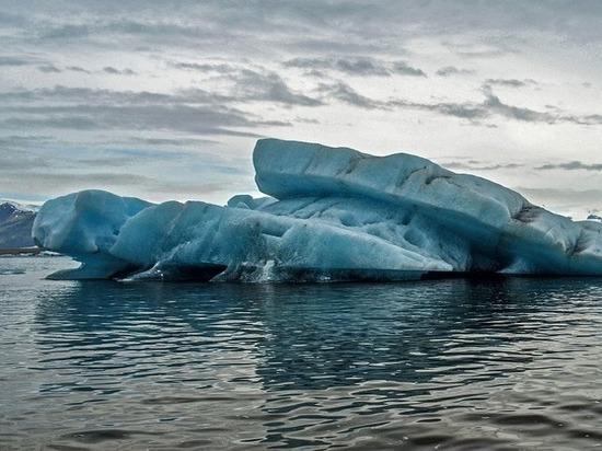 В арктических льдах обнаружен неизвестный науке монстр
