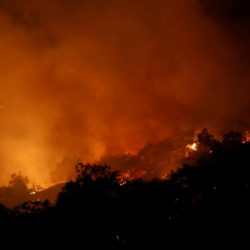 Пожар в Калифорнии стал самым ужасным за историю штата
