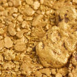 """Ученые обнаружили бактерии, которые собирают золото по крупинкам и превращают его в большие """"самородки"""""""