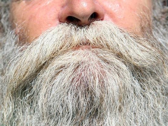 Серебро в бороду: в волосах сибиряков обнаружили драгоценный металл
