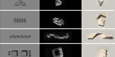 Созданы крошечные роботы-оригами, размеры которых соответствуют размеру живой клетки