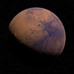 Ученый: чтобы заселить Марс, Илону Маску потребуются генетически модифицированные астронавты