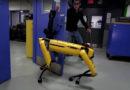 Видеозапись «издевательств» над собакой-роботом впечатлила интернет-пользователей