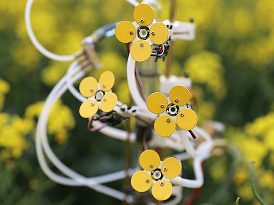 Для пчел создали механический цветок