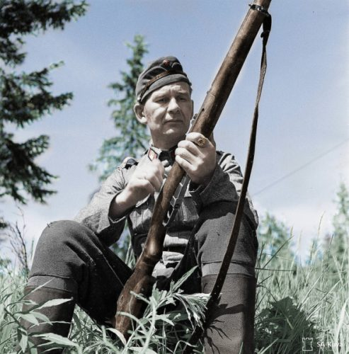 Как финские диверсанты добрались до Вологодской области
