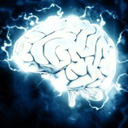 Ученые успешно «перепрограммировали» мозг