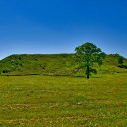 Древнее захоронение в Оренбуржье открыло ученым тайны «потомков амазонок»