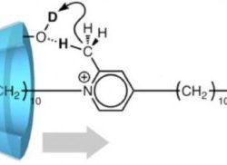Создана первая молекулярная машина, обеспечивающая движение только в одном направлении