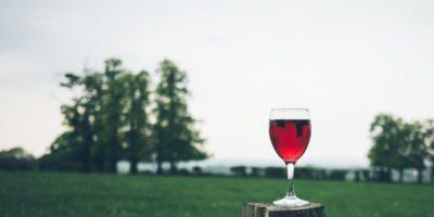Разоблачение знатоков вин