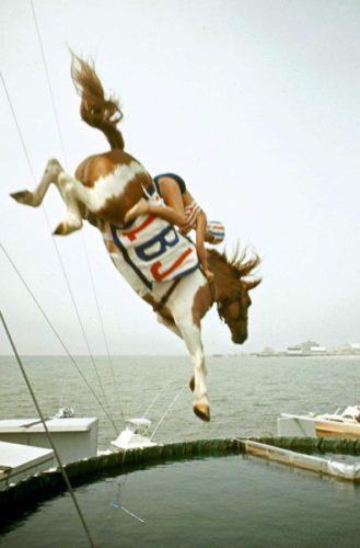 Прыжки в воду на лошадях