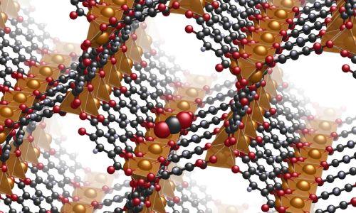 Ученые научились кодировать информацию в виде структуры особых искусственных молекул