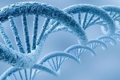 Нужен ли нашим детям наномир? Продолжение