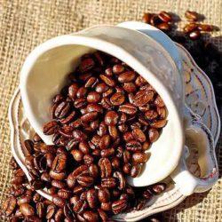Ученые: кофе спасает от старческого слабоумия