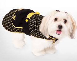 переноски для собак