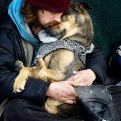 Доказательства того, что собаки любят нас бескорыстно » Новости со всего мира,Интересные новости,Интересные факты,Новости России сегодня,.