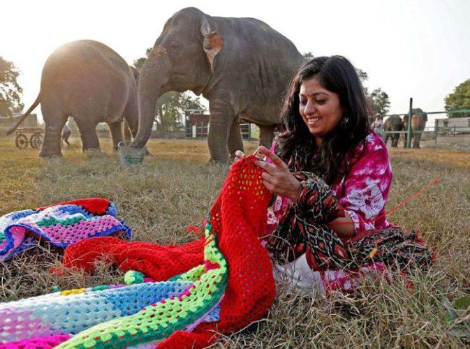 Индийских слонов спасают от холодов теплыми костюмами » Новости со всего мира,Интересные новости,Интересные факты,Новости России сегодня,.
