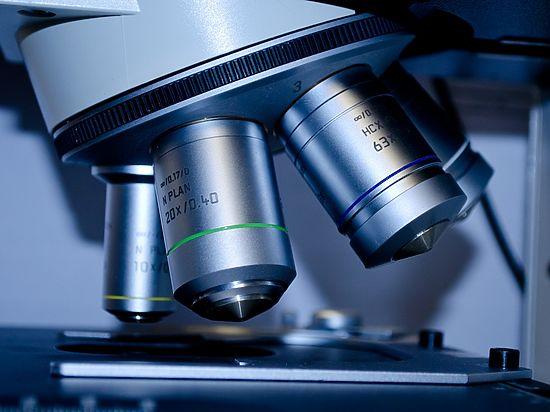 Обнаружен ген, защищающий от переедания