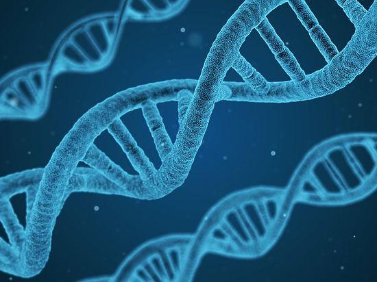 Обнаружена молекула, защищающая мозг от старения