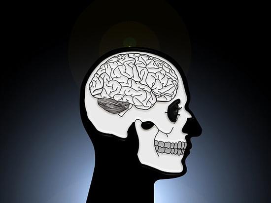 Ученые рассказали об уникальном случае жизни человеческого мозга после смерти