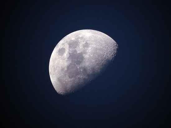 Уфологи обнаружили череп животного на Луне