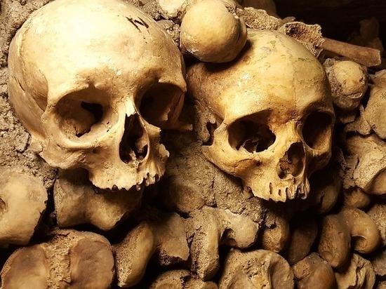 Палеонтологи разобрались, почему в древности практиковался каннибализм