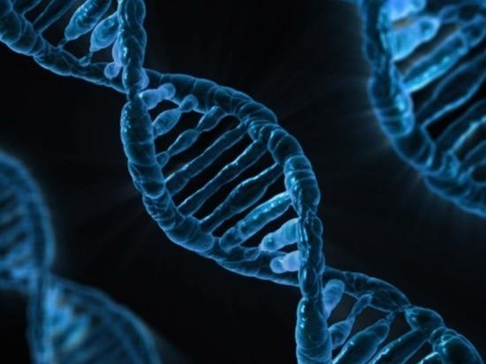 Российские и израильские биологи научились «оживлять» белки