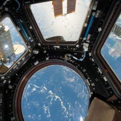 Пыль, снятая с МКС, может оказаться живой