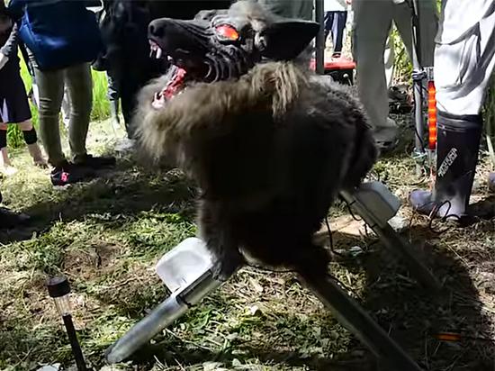 Японцы создали робота в образе волка-оборотня
