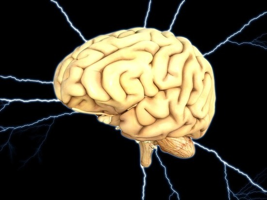 Женский мозг назван более активным, чем мужской