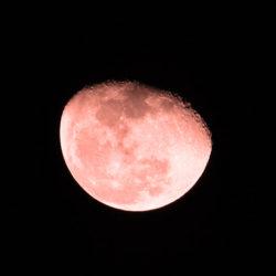 7 августа над Москвой взойдёт «кровавая» луна