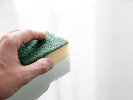 Кухонные губки объявлены крайне опасными для здоровья