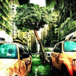 Конспирологи: конец света наступит через неделю