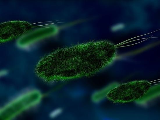 Дисбактериоз скосил 90 процентов населения: что есть и пить