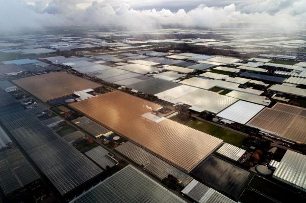 Инновационные фермы Нидерландов