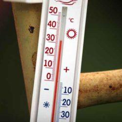Климатологи: к середине века 40-градусная летняя жара станет нормой